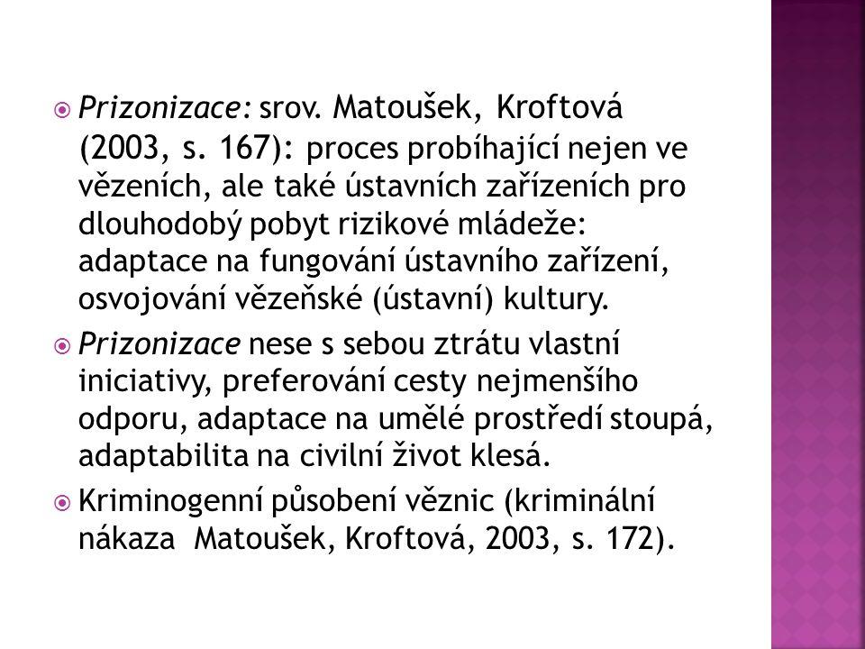  Prizonizace: srov. Matoušek, Kroftová (2003, s. 167): proces probíhající nejen ve vězeních, ale také ústavních zařízeních pro dlouhodobý pobyt rizik