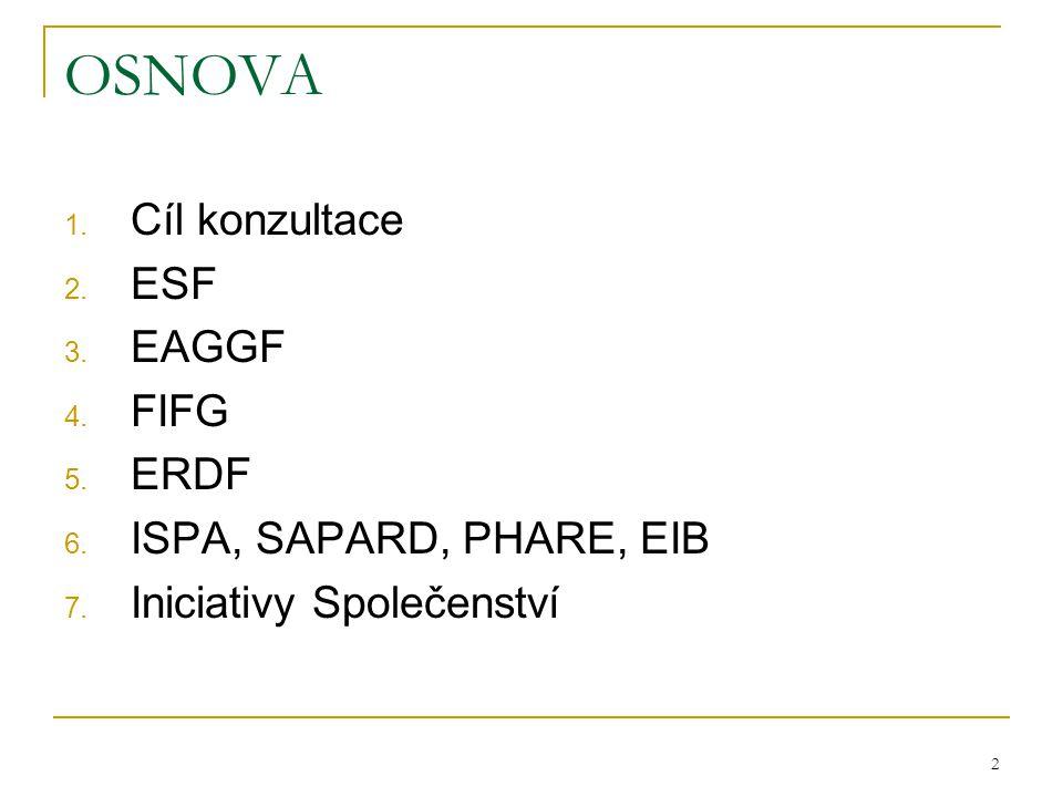 2 OSNOVA 1. Cíl konzultace 2. ESF 3. EAGGF 4. FIFG 5. ERDF 6. ISPA, SAPARD, PHARE, EIB 7. Iniciativy Společenství