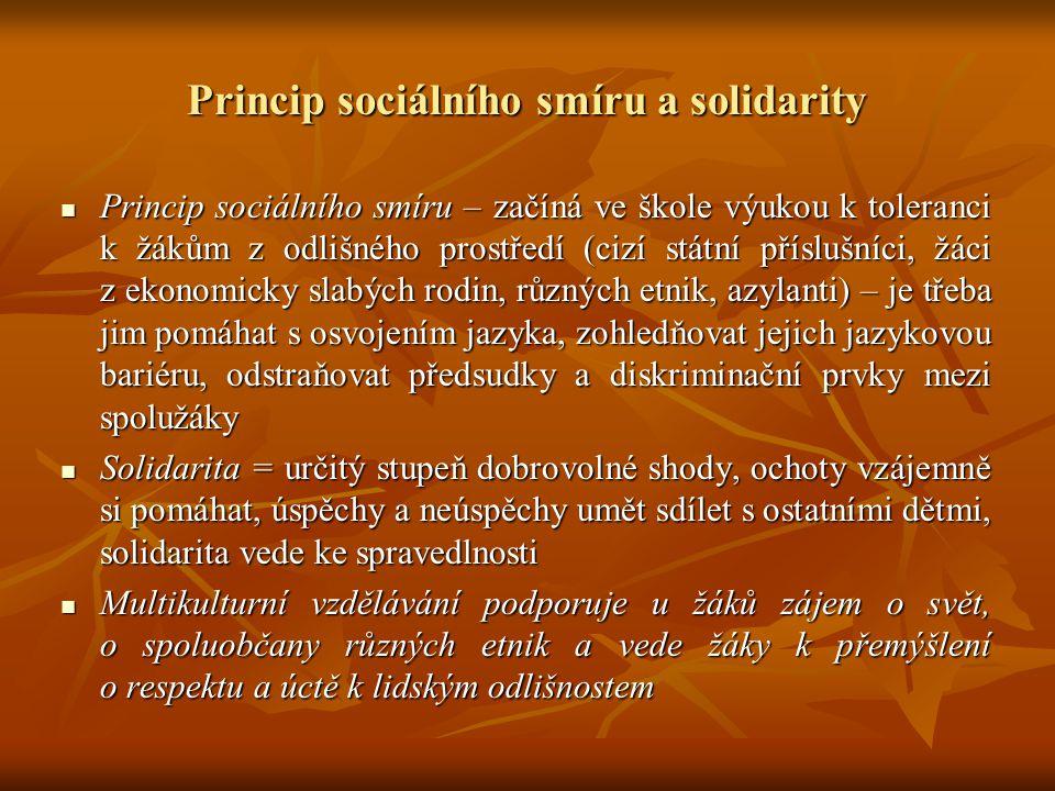 Princip sociálního smíru a solidarity Princip sociálního smíru – začíná ve škole výukou k toleranci k žákům z odlišného prostředí (cizí státní přísluš