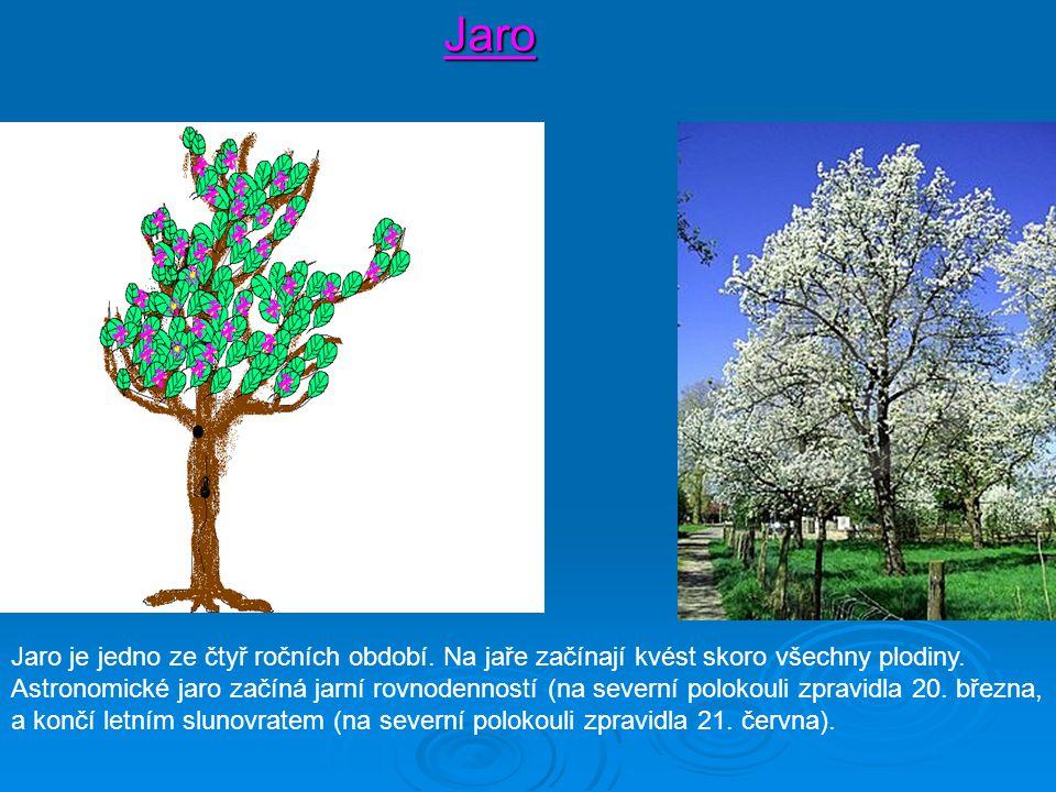 Jaro Jaro je jedno ze čtyř ročních období. Na jaře začínají kvést skoro všechny plodiny. Astronomické jaro začíná jarní rovnodenností (na severní polo