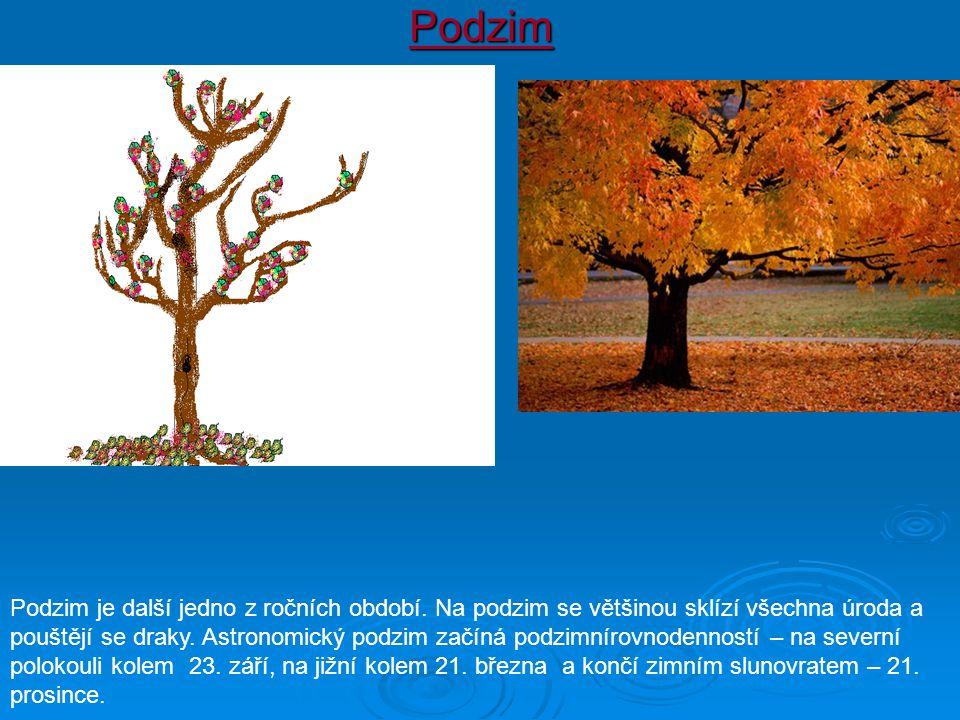 Podzim Podzim je další jedno z ročních období. Na podzim se většinou sklízí všechna úroda a pouštějí se draky. Astronomický podzim začíná podzimnírovn