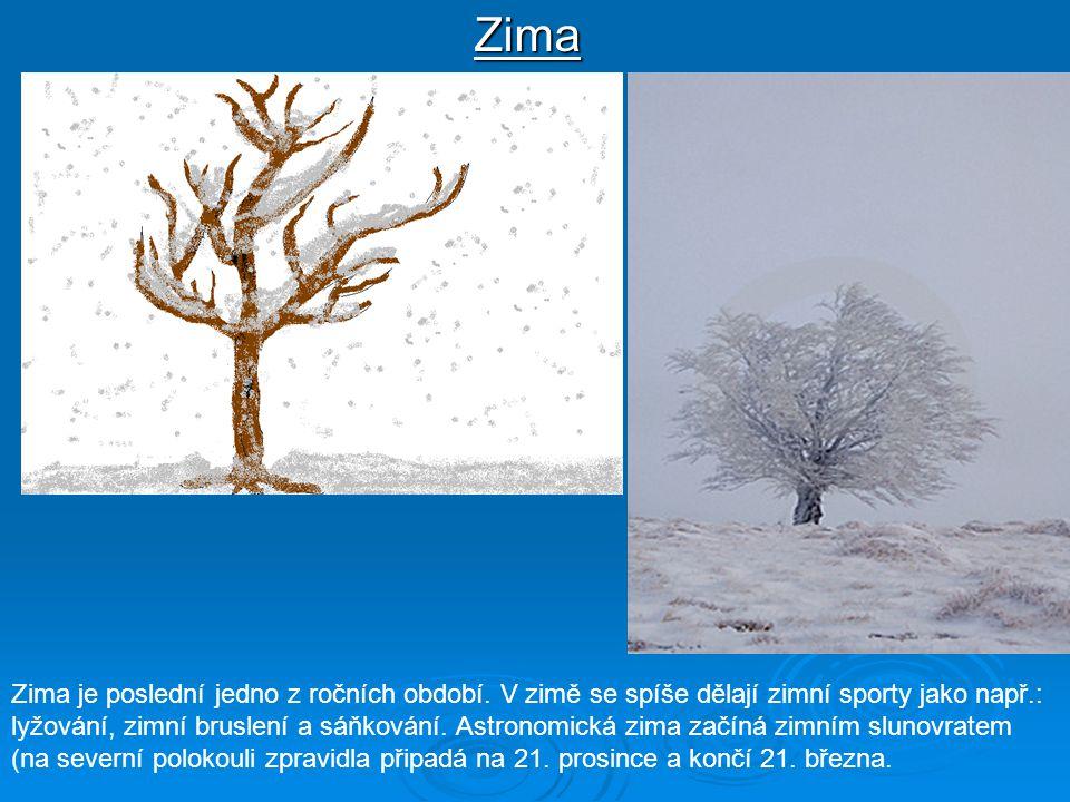 Zima Zima je poslední jedno z ročních období. V zimě se spíše dělají zimní sporty jako např.: lyžování, zimní bruslení a sáňkování. Astronomická zima