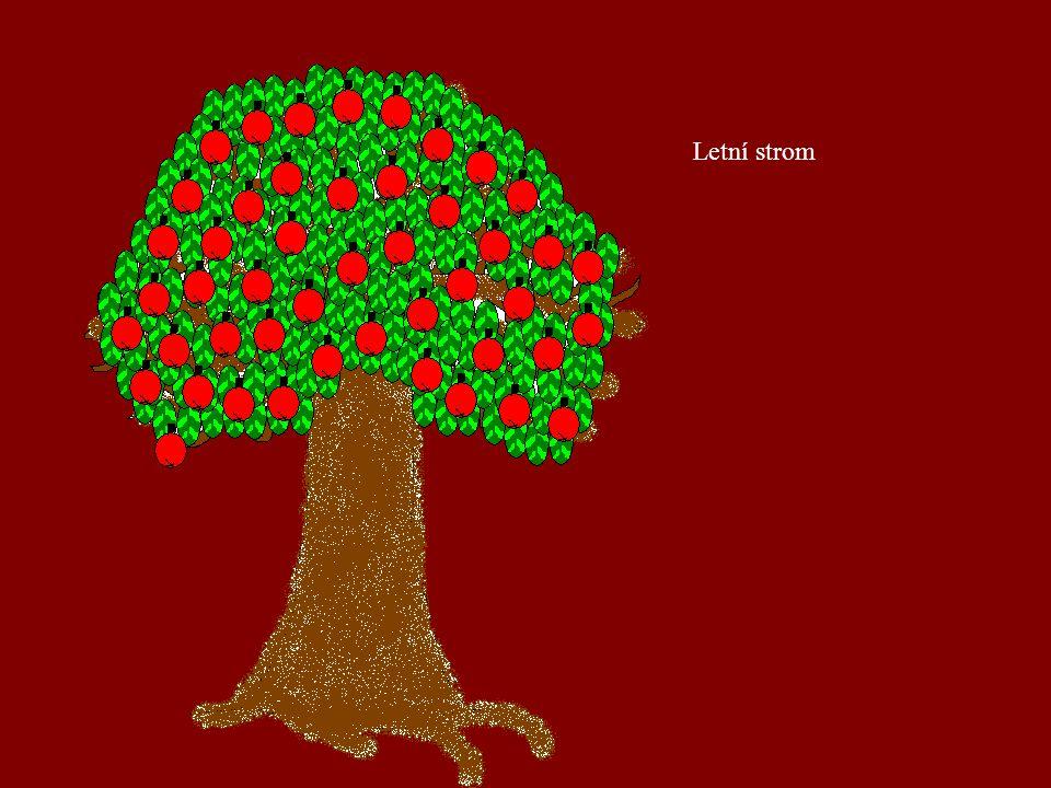 Podzimní strom