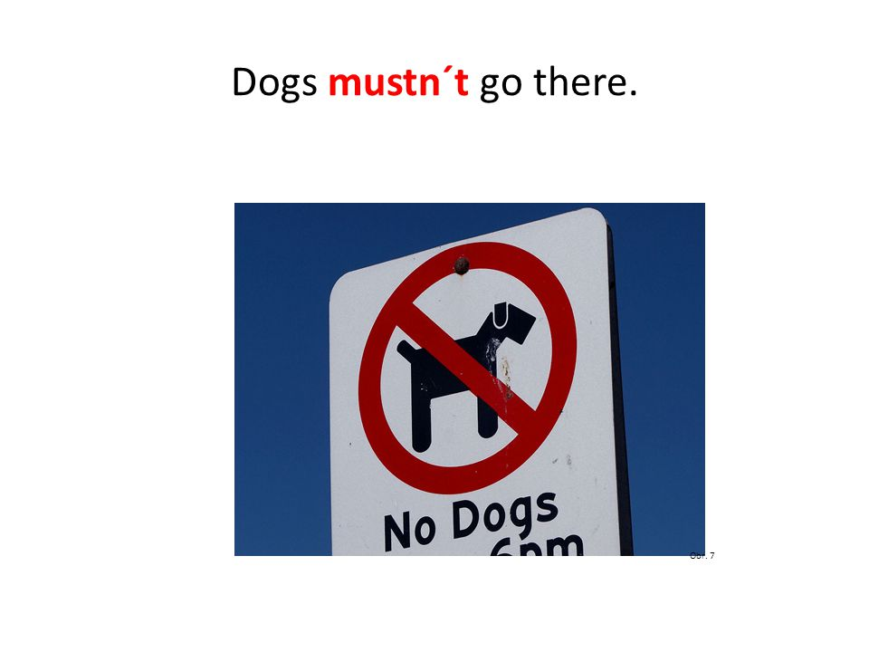 Dogs mustn´t go there. Obr. 7