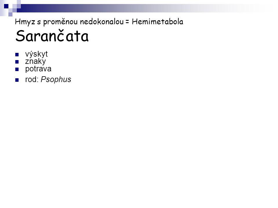 Hmyz s proměnou nedokonalou = Hemimetabola Sarančata výskyt znaky potrava rod: Psophus