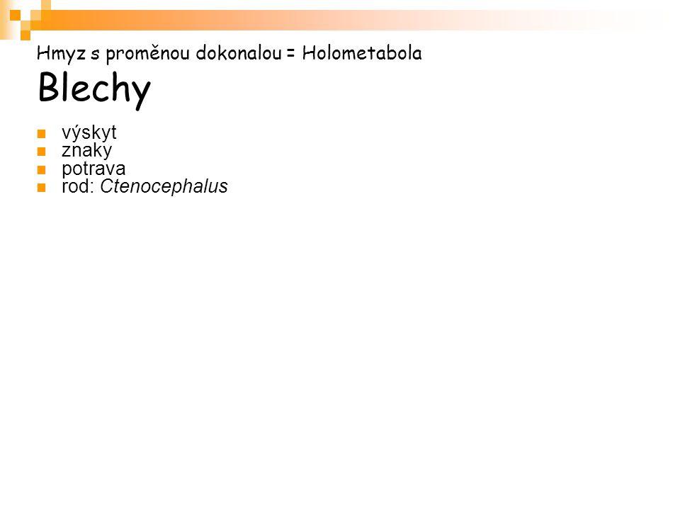 Hmyz s proměnou dokonalou = Holometabola Blechy výskyt znaky potrava rod: Ctenocephalus