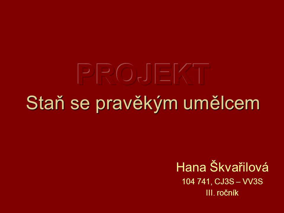 Hana Škvařilová 104 741, CJ3S – VV3S III. ročník