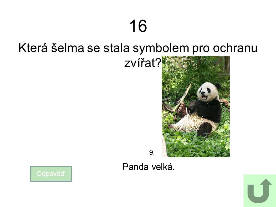 16 Která šelma se stala symbolem pro ochranu zvířat? Odpověď Panda velká. 9.