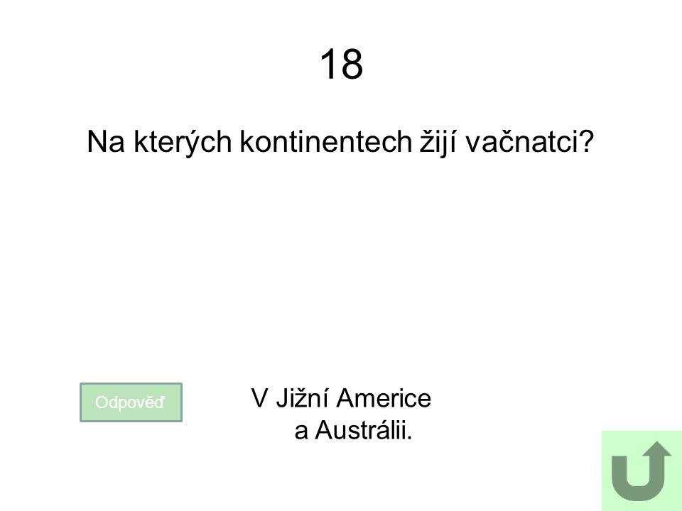 18 Na kterých kontinentech žijí vačnatci? Odpověď V Jižní Americe a Austrálii.