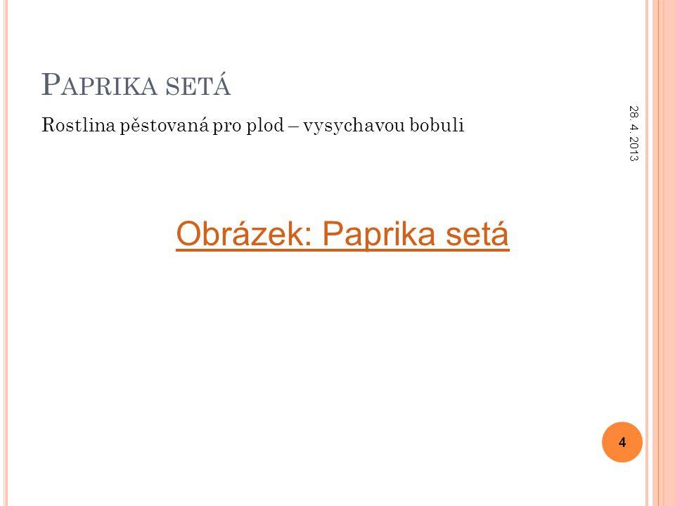 P APRIKA SETÁ Rostlina pěstovaná pro plod – vysychavou bobuli 28. 4. 2013 4 Obrázek: Paprika setá