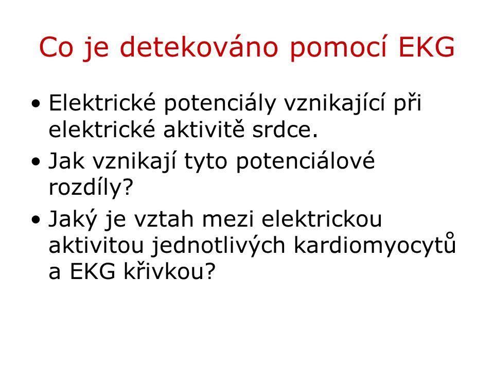 Co je detekováno pomocí EKG Elektrické potenciály vznikající při elektrické aktivitě srdce. Jak vznikají tyto potenciálové rozdíly? Jaký je vztah mezi
