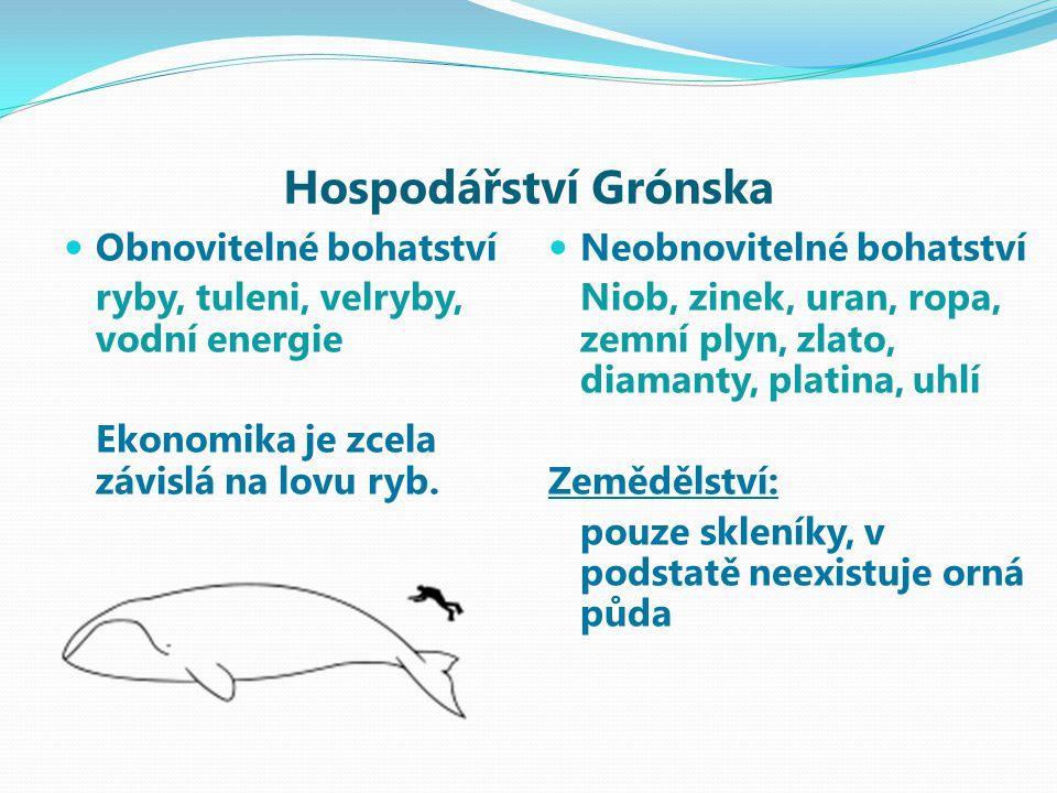 Hospodářství Grónska Obnovitelné bohatství ryby, tuleni, velryby, vodní energie Ekonomika je zcela závislá na lovu ryb.