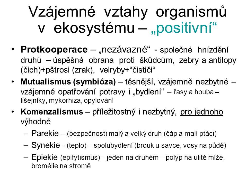"""Vzájemné vztahy organismů v ekosystému - """"negativní = Predace Predace vlastní (Herbivorie, Mycetofagie) - jeden druhého žere, nejde o soužití Parazitismus – soužití, parazit na úkor hostitele Parazitismus vlastní – u rostlin i živočichů, hostitel hyne Poloparazitismus (jmelí, ochmet na dubu) Patogenie – u virů, baktérií, prvoků, dlouhodobé, onemocnění, ale nemusí zhynout Predační tlak: poměr ulovených / dosažitelných: hlodavci 0,2-0,4 kopytníci 0,02-0,15"""