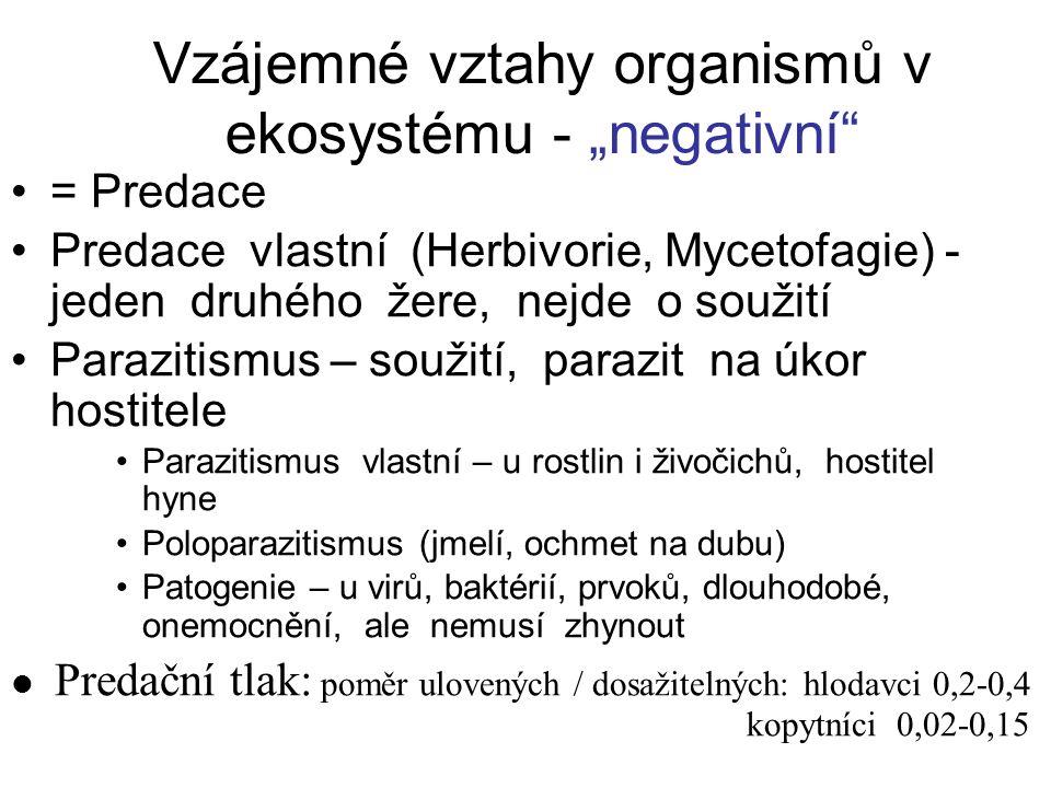 """Vzájemné vztahy organismů v ekosystému - """"negativní"""" = Predace Predace vlastní (Herbivorie, Mycetofagie) - jeden druhého žere, nejde o soužití Parazit"""