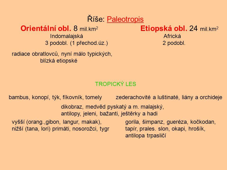 Říše: Paleotropis Orientální obl. 8 mil.km 2 Etiopská obl. 24 mil.km 2 IndomalajskáAfrická 3 podobl. (1 přechod.úz.) 2 podobl. radiace obratlovců, nyn