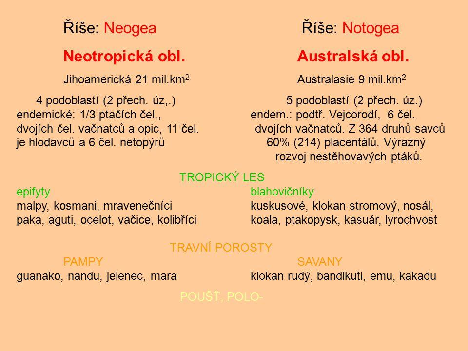 Říše: Neogea Říše: Notogea Neotropická obl.Australská obl. Jihoamerická 21 mil.km 2 Australasie 9 mil.km 2 4 podoblastí (2 přech. úz,.) 5 podoblastí (