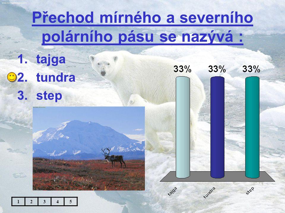 Na obrázku je : 1.bílý medvěd 2.lední medvěd 3.medvěd grizzly 12345