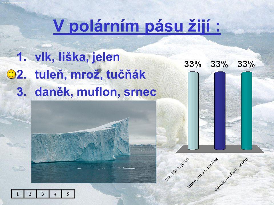 První Čech na severním pólu : 1.František Běhounek 2.Roald Amundsen 3.Jaroslav Foglar 12345