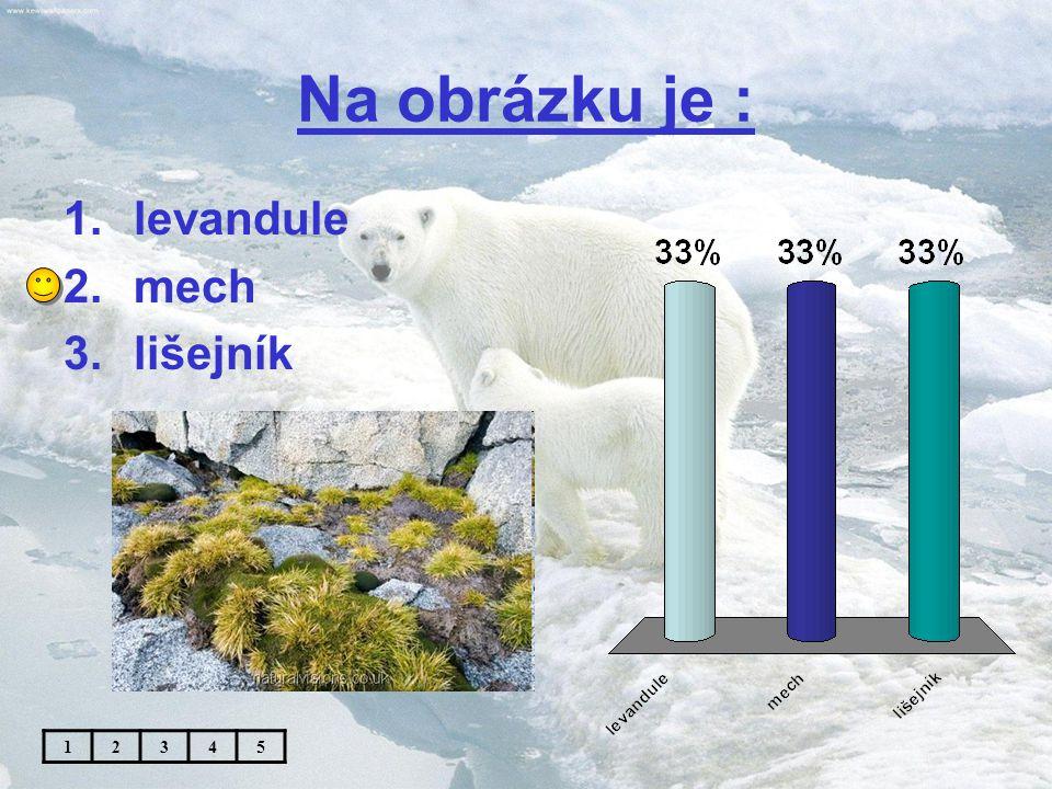 Absolutně nejnižší teplota na Zemi : 1.- 62,4°Celsia 2.- 74,8°Celsia 3.- 89,2°Celsia 12345