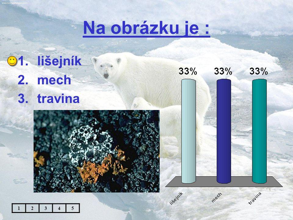 Téma: Podnebné pásy IV.( polární pás ) - 5. ročník Použitý software: držitel licence - ZŠ J.