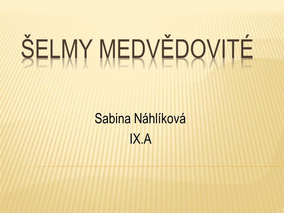 Sabina Náhlíková IX.A