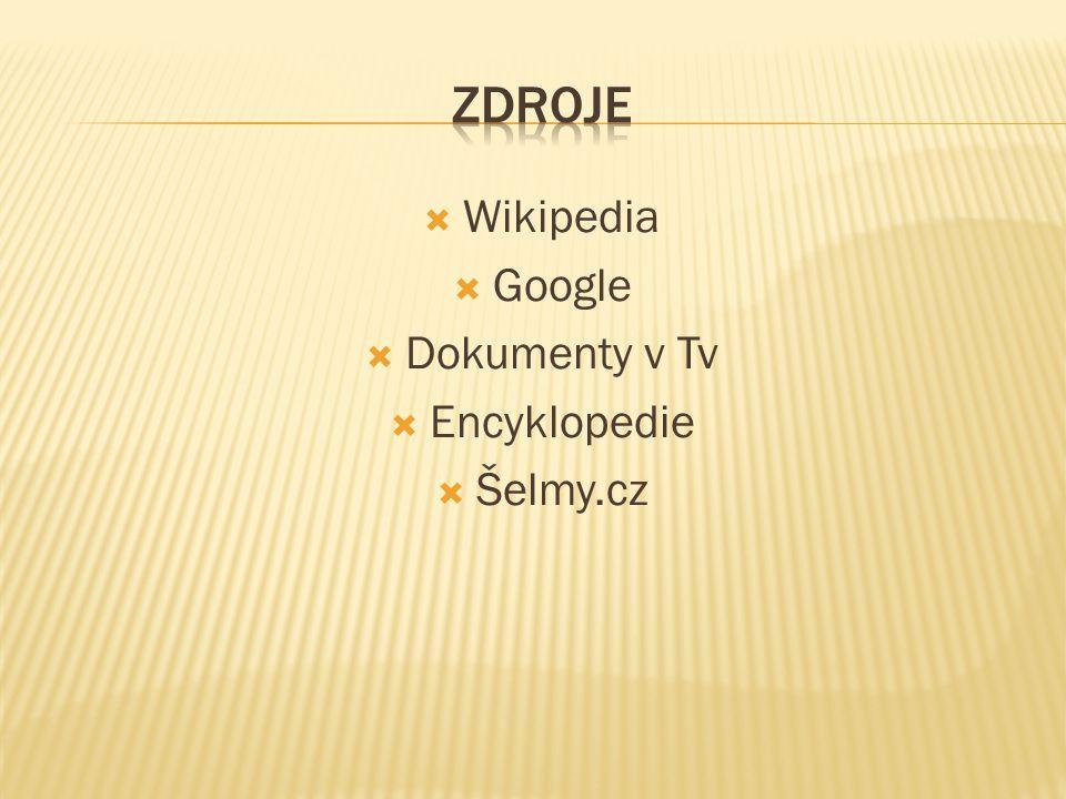  Wikipedia  Google  Dokumenty v Tv  Encyklopedie  Šelmy.cz
