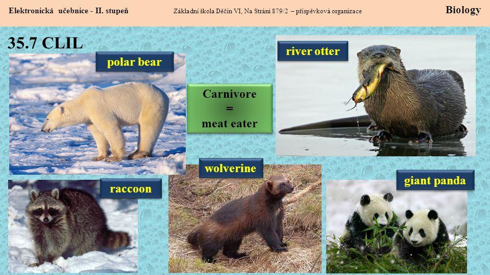 35.7 CLIL Elektronická učebnice - II. stupeň Základní škola Děčín VI, Na Stráni 879/2 – příspěvková organizace Biology river otter polar bear wolverin