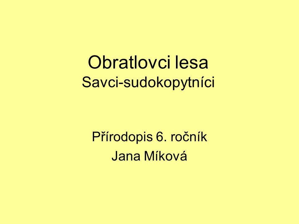 Obratlovci lesa Savci-sudokopytníci Přírodopis 6. ročník Jana Míková