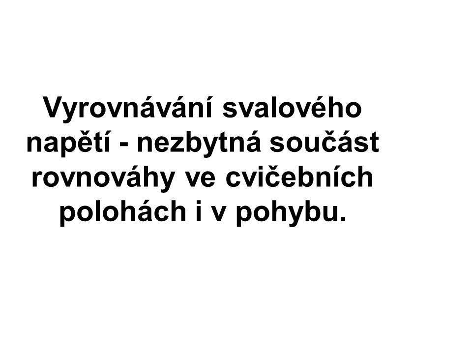 Literatura Čumpelík, J., Strnad, P., Véle, F., dechové pohyby a stabilita páteře.