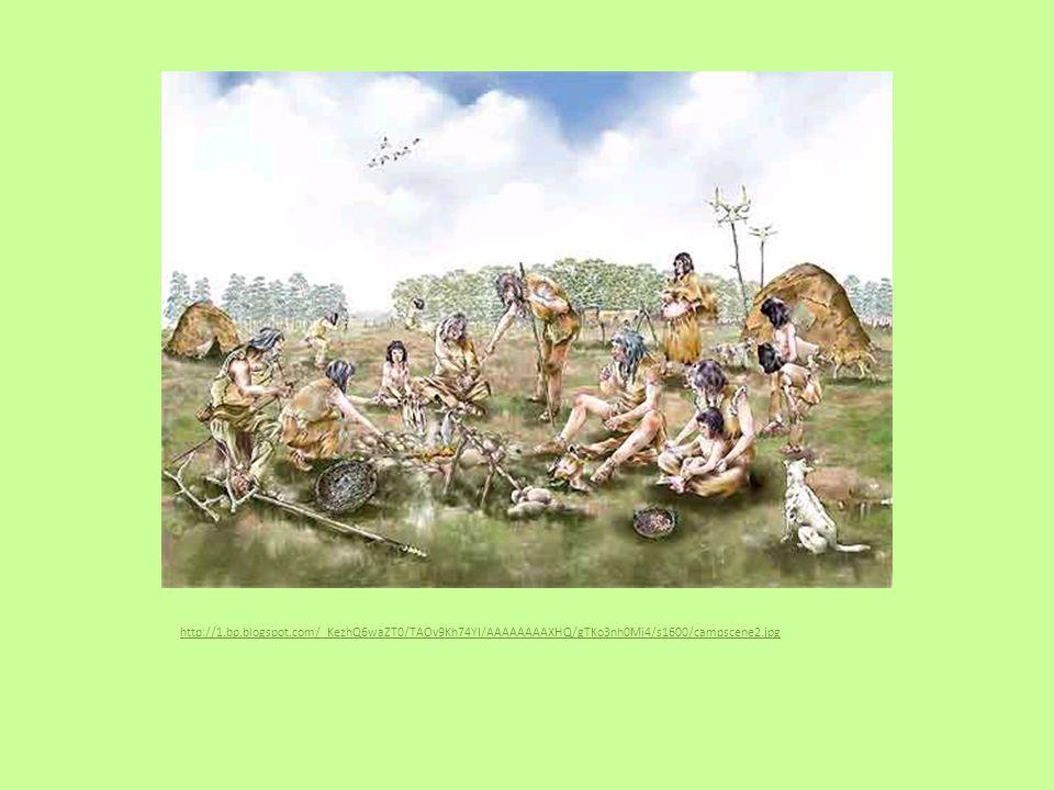 Mění se rostlinstvo a zvířata: Mnohem více rostou: bříza, borovice, líska, dub, jilm, lípa, jasan Los, jelen, srna, divoké prase, zubr, medvěd, bobr, vydra, pes, zajíc, želva jsou obvyklá zvířata v lesích Byl ochočen pes – pomáhá při lovu