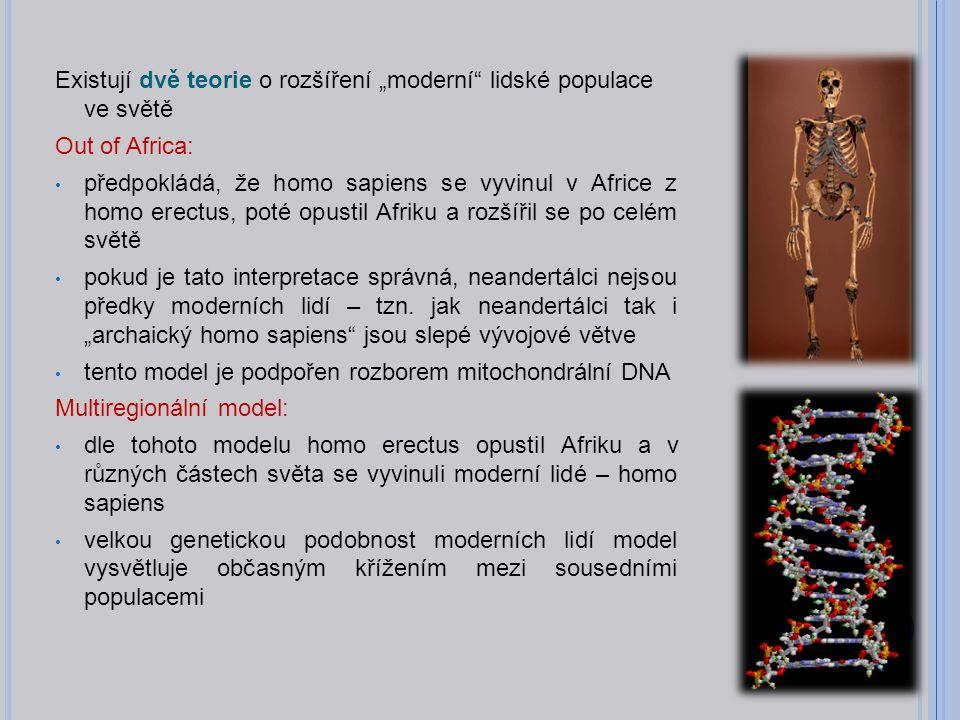 """Existují dvě teorie o rozšíření """"moderní lidské populace ve světě Out of Africa: předpokládá, že homo sapiens se vyvinul v Africe z homo erectus, poté opustil Afriku a rozšířil se po celém světě pokud je tato interpretace správná, neandertálci nejsou předky moderních lidí – tzn."""