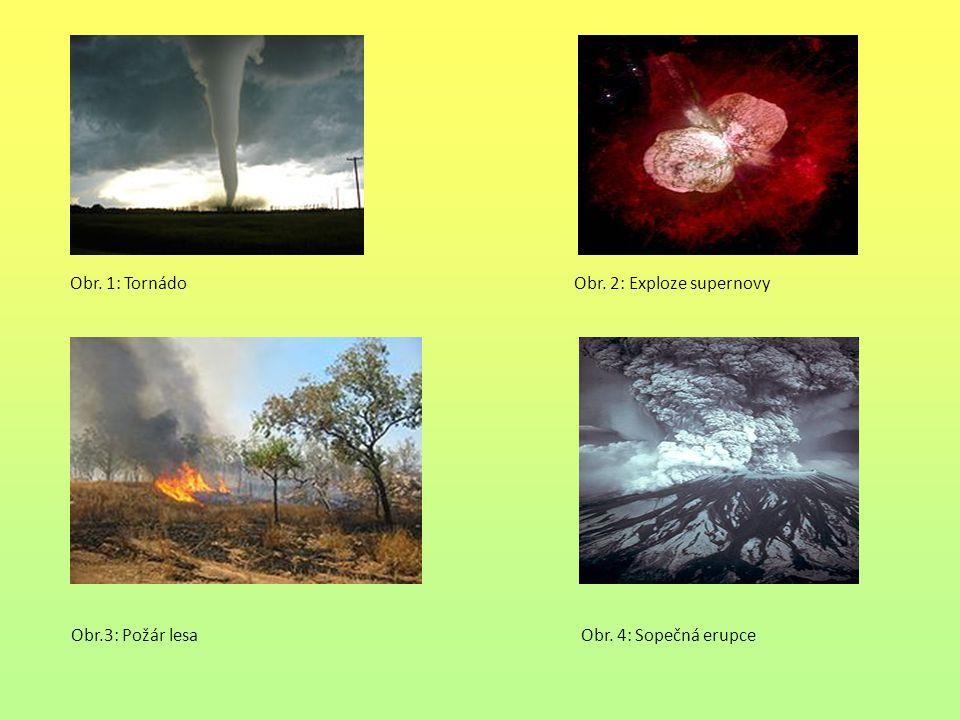 Příčiny ekologických katastrof díky člověku Průmyslové katastrofy Chemické katastrofy Jaderné katastrofy (Černobyl, Fukušima) Dopravní katastrofa Dopravní nehody Letecké nehody Kosmické nehody Násilné jednání Válka Terorismus Žhářství