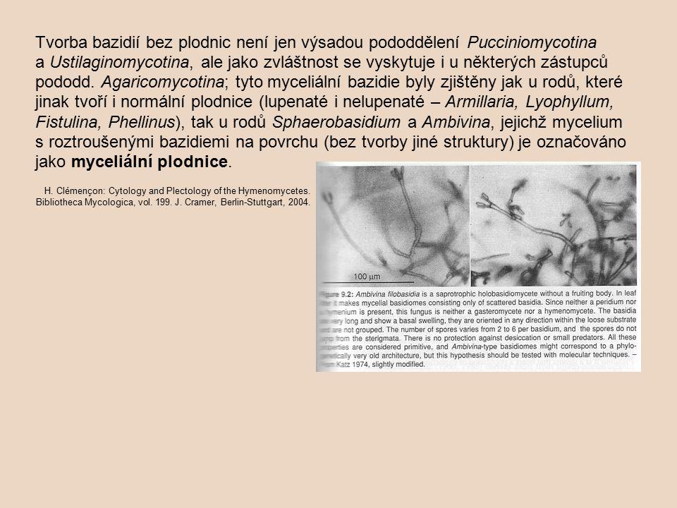 Tvorba bazidií bez plodnic není jen výsadou pododdělení Pucciniomycotina a Ustilaginomycotina, ale jako zvláštnost se vyskytuje i u některých zástupců