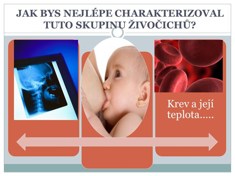 JAK BYS NEJLÉPE CHARAKTERIZOVAL TUTO SKUPINU ŽIVOČICHŮ? Krev a její teplota…..