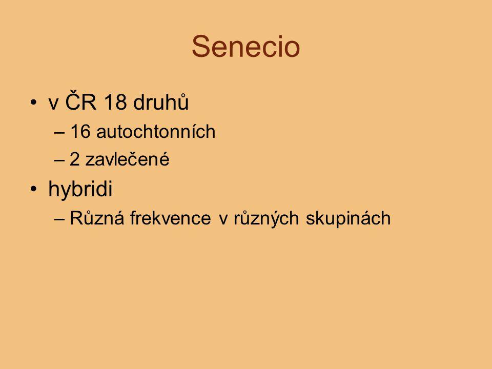 Senecio v ČR 18 druhů –16 autochtonních –2 zavlečené hybridi –Různá frekvence v různých skupinách