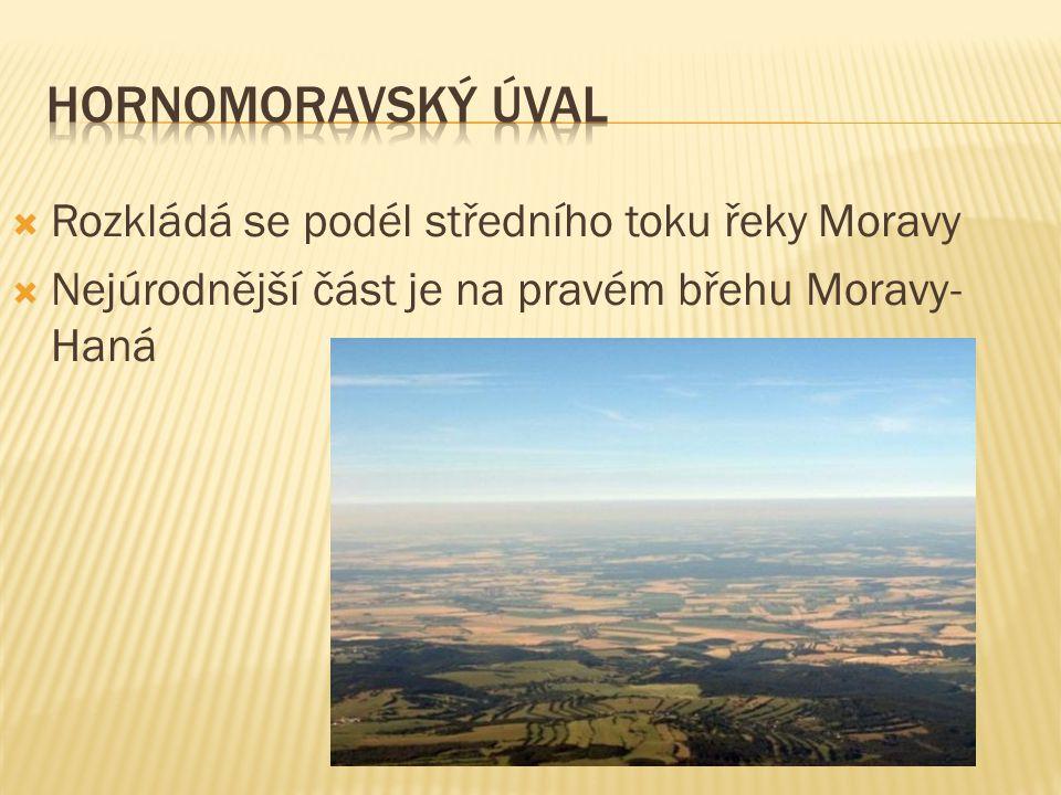  Rozkládá se podél středního toku řeky Moravy  Nejúrodnější část je na pravém břehu Moravy- Haná