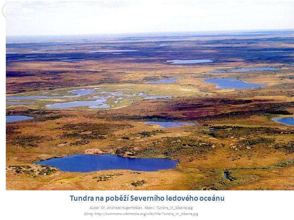 Tundra na poběží Severního ledového oceánu Autor: Dr. Andreas Hugentobler, Název: Tundra_in_Siberia.jpg Zdroj: http://commons.wikimedia.org/wiki/File: