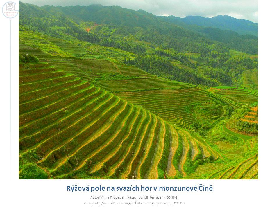 Rýžová pole na svazích hor v monzunové Číně Autor: Anna Frodesiak, Název: Longji_terrace_-_03.JPG Zdroj: http://en.wikipedia.org/wiki/File:Longji_terr