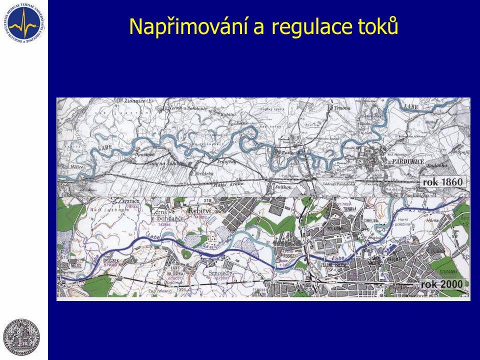 Napřimování a regulace toků