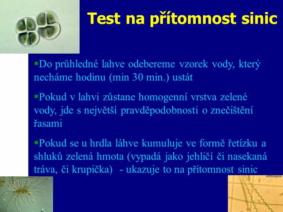 Test na přítomnost sinic  Do průhledné lahve odebereme vzorek vody, který necháme hodinu (min 30 min.) ustát  Pokud v lahvi zůstane homogenní vrstva