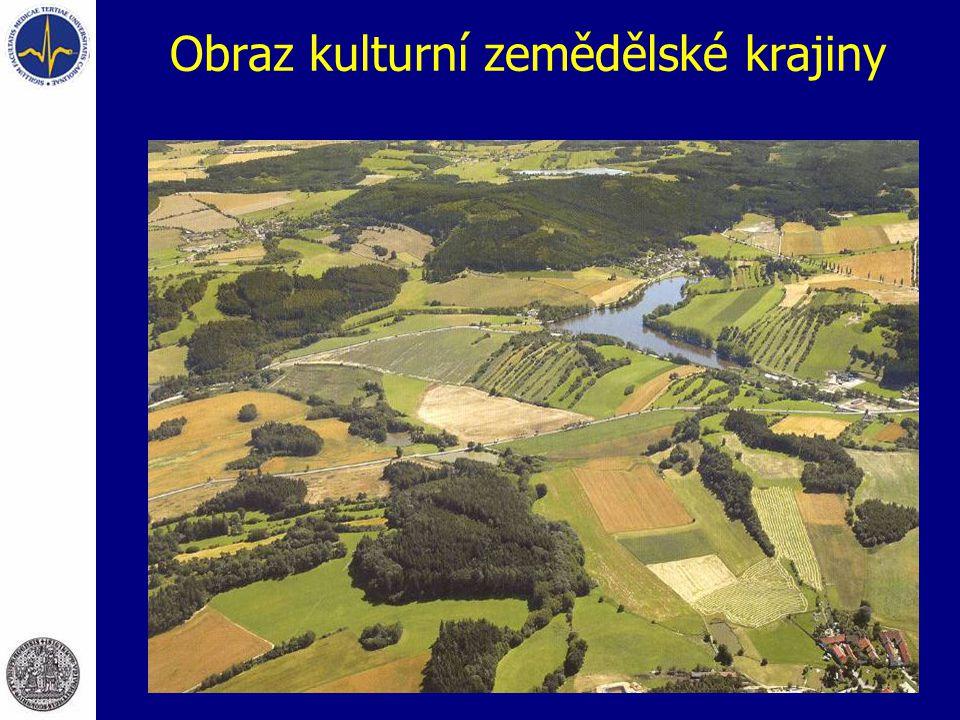 Obraz kulturní zemědělské krajiny