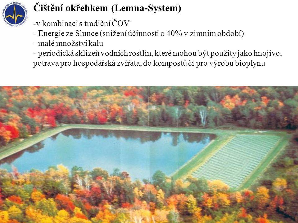 Čištění okřehkem (Lemna-System) -v kombinaci s tradiční ČOV - Energie ze Slunce (snížení účinnosti o 40% v zimním období) - malé množství kalu - perio