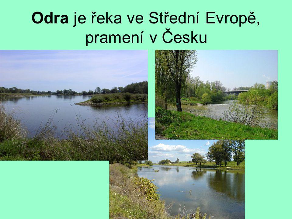 Odra je řeka ve Střední Evropě, pramení v Česku