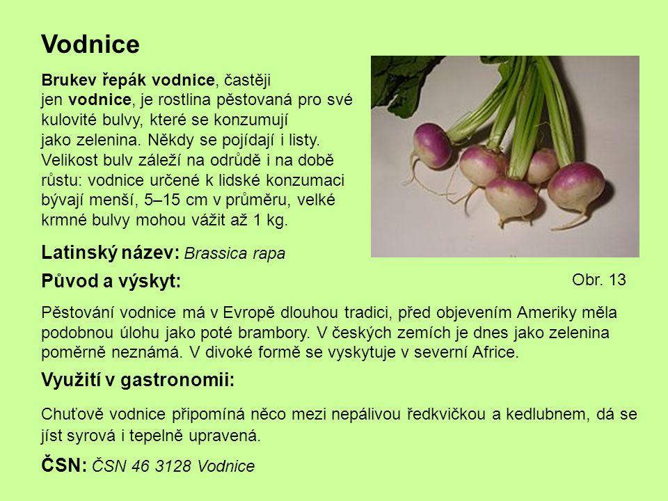 Vodnice Brukev řepák vodnice, častěji jen vodnice, je rostlina pěstovaná pro své kulovité bulvy, které se konzumují jako zelenina. Někdy se pojídají i
