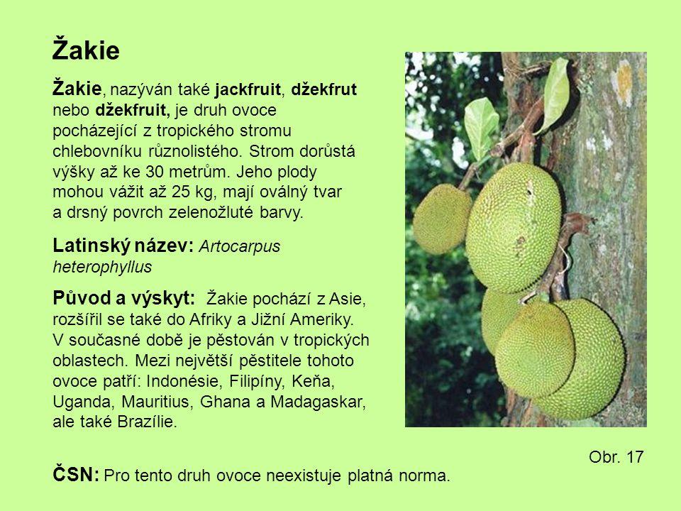 Žakie Žakie, nazýván také jackfruit, džekfrut nebo džekfruit, je druh ovoce pocházející z tropického stromu chlebovníku různolistého. Strom dorůstá vý