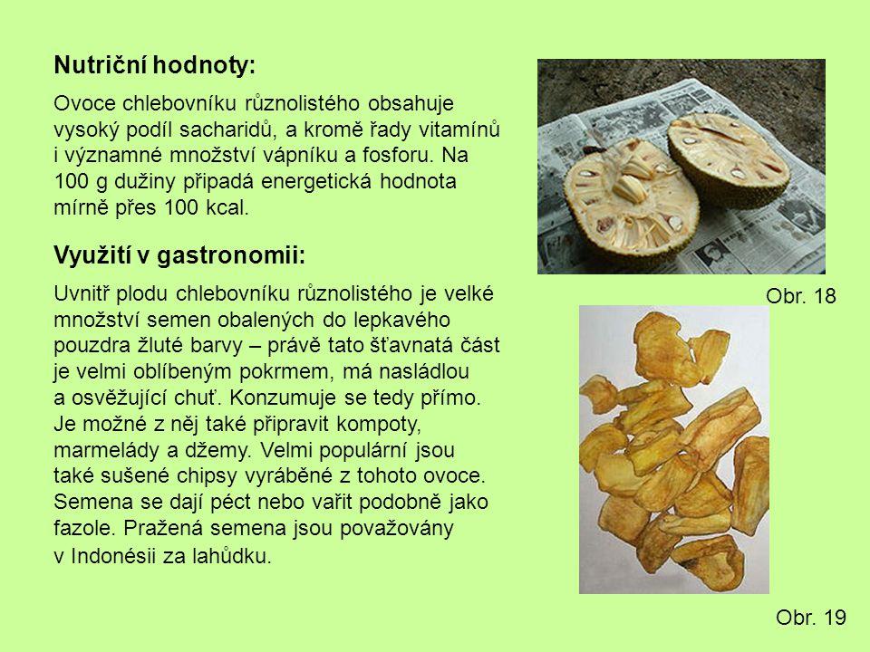 Nutriční hodnoty: Ovoce chlebovníku různolistého obsahuje vysoký podíl sacharidů, a kromě řady vitamínů i významné množství vápníku a fosforu. Na 100