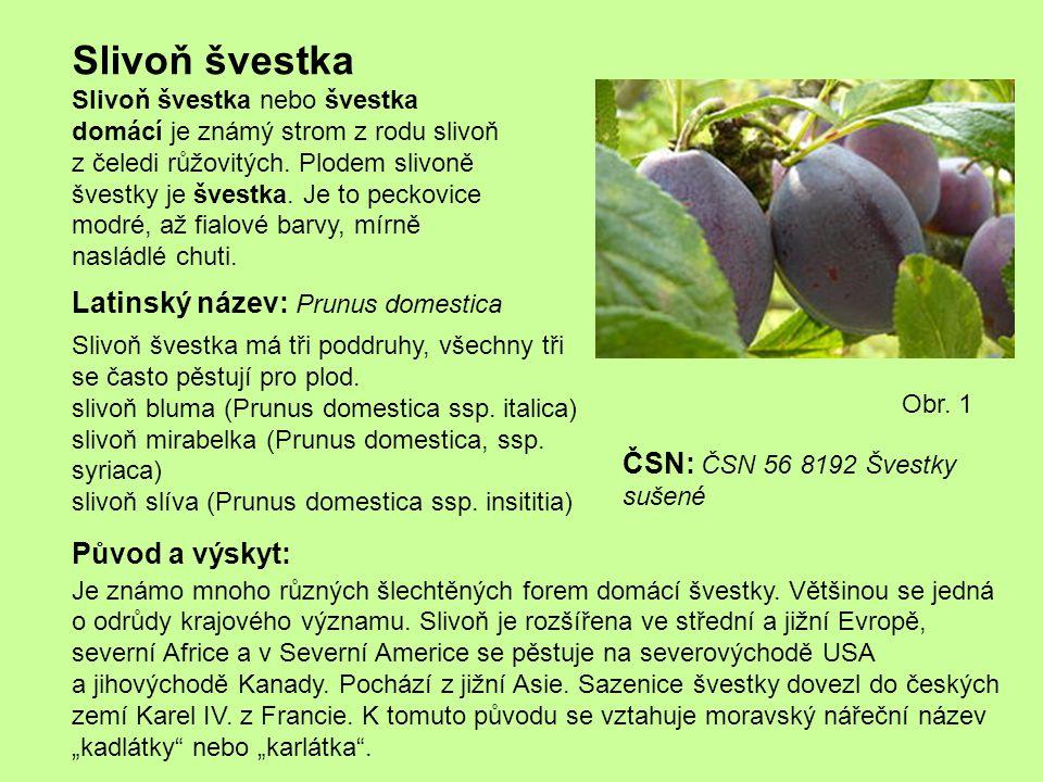 Slivoň švestka Slivoň švestka nebo švestka domácí je známý strom z rodu slivoň z čeledi růžovitých. Plodem slivoně švestky je švestka. Je to peckovice