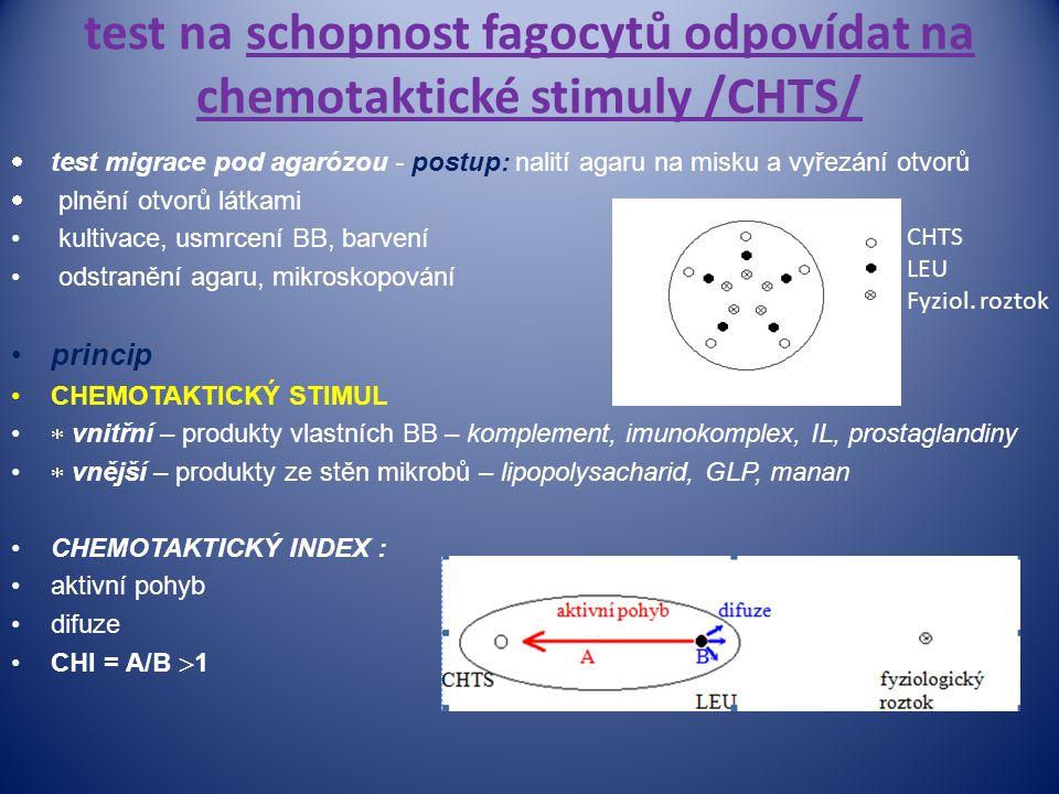 test na schopnost fagocytů odpovídat na chemotaktické stimuly /CHTS/  test migrace pod agarózou - postup: nalití agaru na misku a vyřezání otvorů  p