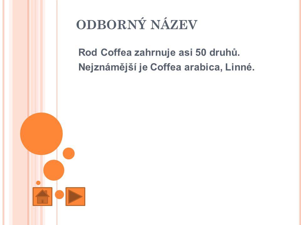 ODBORNÝ NÁZEV Rod Coffea zahrnuje asi 50 druhů. Nejznámější je Coffea arabica, Linné.
