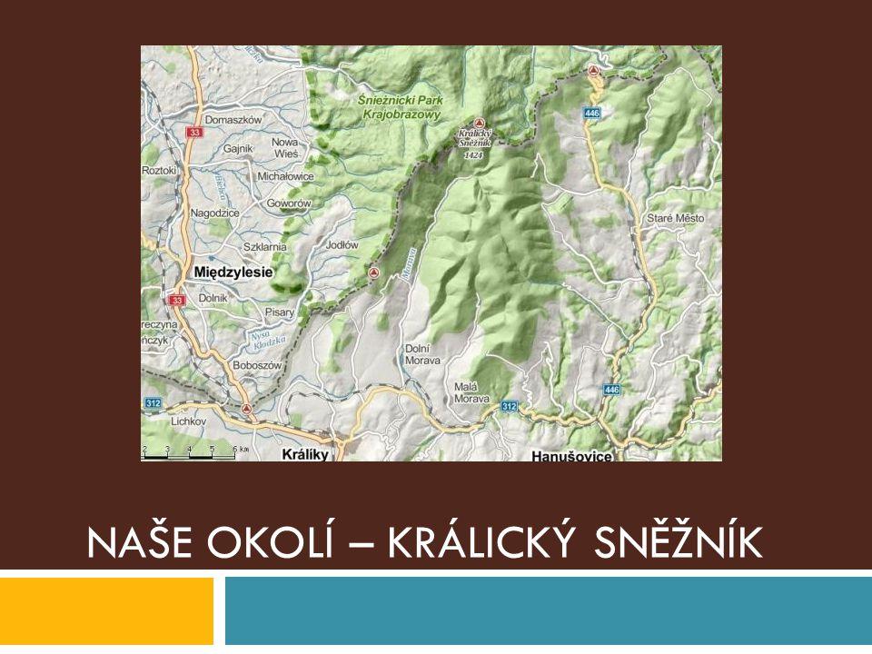 Národní přírodní rezervace Králický Sněžník, která byla vyhlášena v roce 1990.